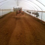 getting greenhouse ready