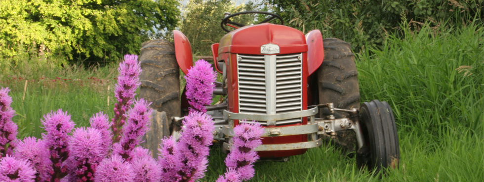 tractorflower
