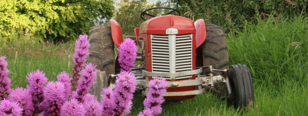 tractorflower